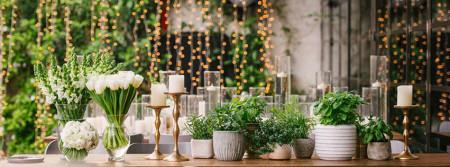 WedReviews - גני אירועים ומקומות לחתונה - אביגדור