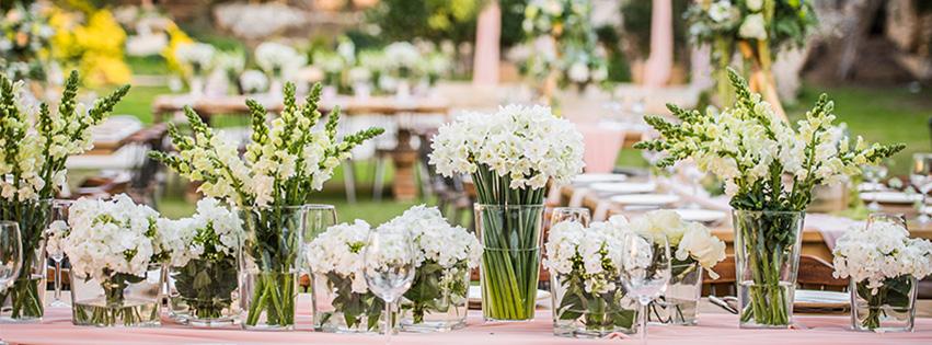 WedReviews - גני אירועים ומקומות לחתונה - הגבעה