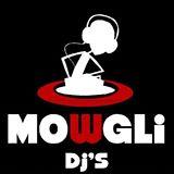 WedReviews - Dj לחתונה - מוגלי מוסיקה |  mowglidjs | מורן שניצר