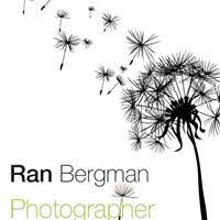 WedReviews - צילום סטילס - רן ברגמן | Ran Bergman