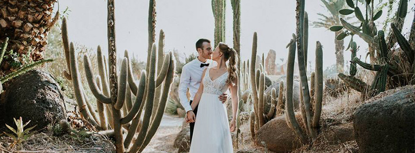 WedReviews - צלמים לחתונה - ארטיק | Artik