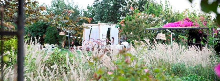 WedReviews - גני אירועים ומקומות לחתונה - Q אירועים | הקיו, גן אירועים בקיבוץ גליל ים